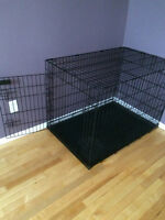 Large Dog Kennel with box