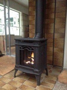 Napoleon Cast Iron Freestanding Gas Stove Fireplace