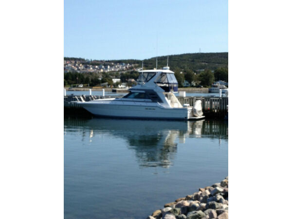 Used 1988 Sea Ray Boats 430 Convertible Flybridge