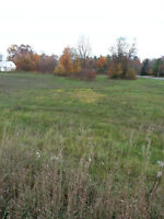 """""""Reduced"""" Building Lot in Verona,ON  Drilled Well"""