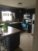 house for rent in the beautiful Moncton North