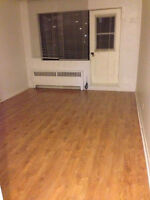 (Renovated Studio Well Located in McGill Ghetto) 1 Month FREE
