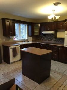 Get Your Free Quote In Now,cabinets St. John's Newfoundland image 10