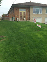 Semi-Detached Bungalow with separate entrance - Jane/Sheppard