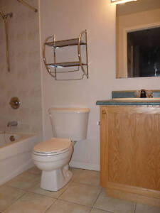 Great 1 bedroom unit for rent!