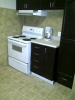 Clean1 bedroom apartment in Keswick Ontario for rent