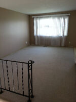 Two Bedroom Apartment with  Washer/Dryer   Private Entrance