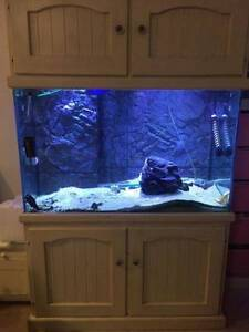 aquarium fish tank 4x2x2.5 still running Yangebup Cockburn Area Preview
