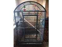 Very large bird cage