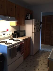 4 1/2 apartment in the west island, right next to river!  West Island Greater Montréal image 4