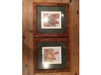 Pair of beautiful framed rare breed chicken prints
