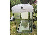Aqua 30 fish tank