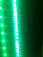LED Strip Light RGB+W  with 120LEDs / meter