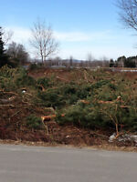 Stayner lot forsale behind public school and highschool