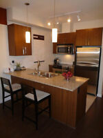 $999 / 1br - 690ft - New, Furnished 1 bdrm & Den, Condo (Abbots