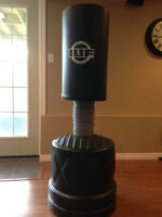 Punching Bag-With Gloves