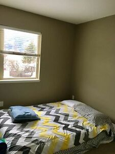 Room available 1st April Downtown Fernie