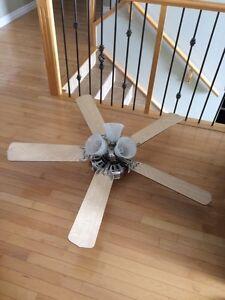 Ceiling Fan & Light