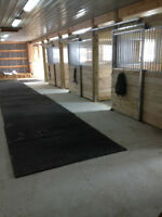 Do You Need A Quiet , Excellent Care Place For Your Horse!