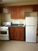 SPACIOUS NICELY RENOVATED 1 BEDROOM APT EAST END BELLEVILLE
