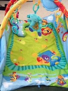 Baby Einstein playmat London Ontario image 1