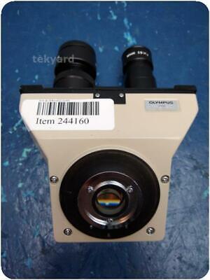 Olympus Microscope Head 244160