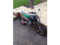 110cc oil cooled pitbike