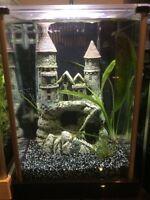 Fluval spec 2 gallon fish tank