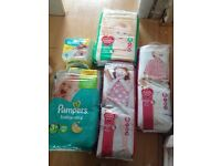Selection of nappies pampers and Tesco brand new