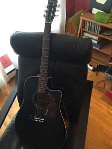 Norman Acoustic Guitar with case