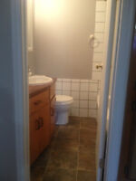 2 Bedroom spacious basement suite for rent in North Lethbridge