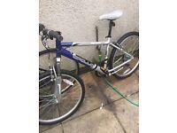 Bike Apollo