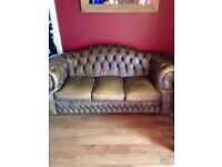 Two Chesterfield brown leather sofas