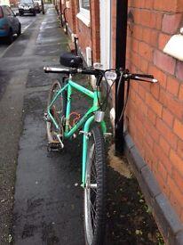 Mountain bike - bargain £45 ono
