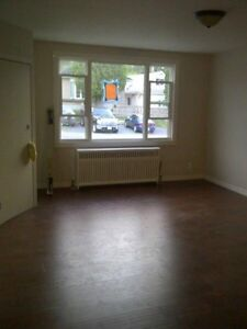 Totally Renovated  1 Bdm Apt Avail June 1st in Quiet Area