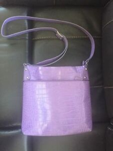 Danier Leather Spring Purse