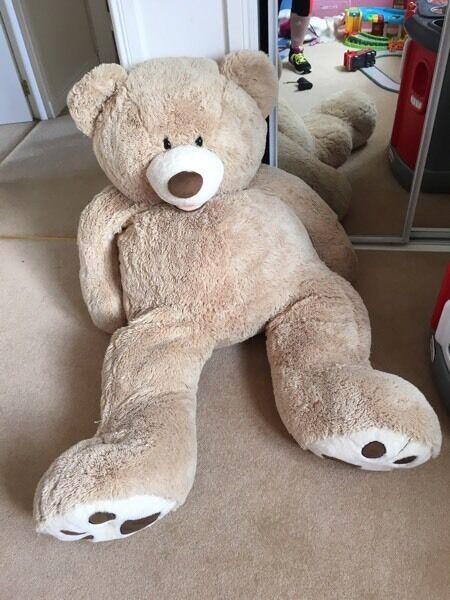 Large Bear