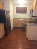 2 Bedroom Suite in Newer Building - Available Today!