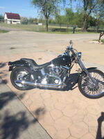 96 Harley-Davidson Softail in Great Condition!