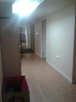 2 Bedroom Basement Apartment Available July 1st!