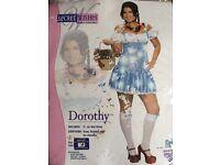 Fancy dress costume - Dorothy