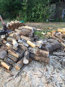 Dry hard wood fire wood for sale