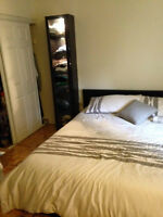 Downtown Montreal apartment for rent
