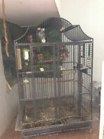 Assorted LARGE Parrot cages! Breeder Boxes as well!