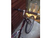 Red magna mini-eagle bike