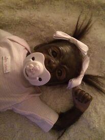 Baby reborn monkey, Kiwi!