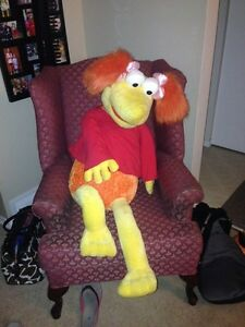 Red Fraggle is looking for a new home Kitchener / Waterloo Kitchener Area image 2