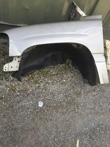 2004 Dinali hood and front fenders