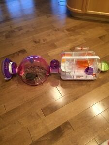 Hamster Cages and all accessories Strathcona County Edmonton Area image 2
