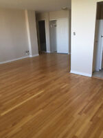 Modern Renovated 3 1/2 avail., large and animal friendly